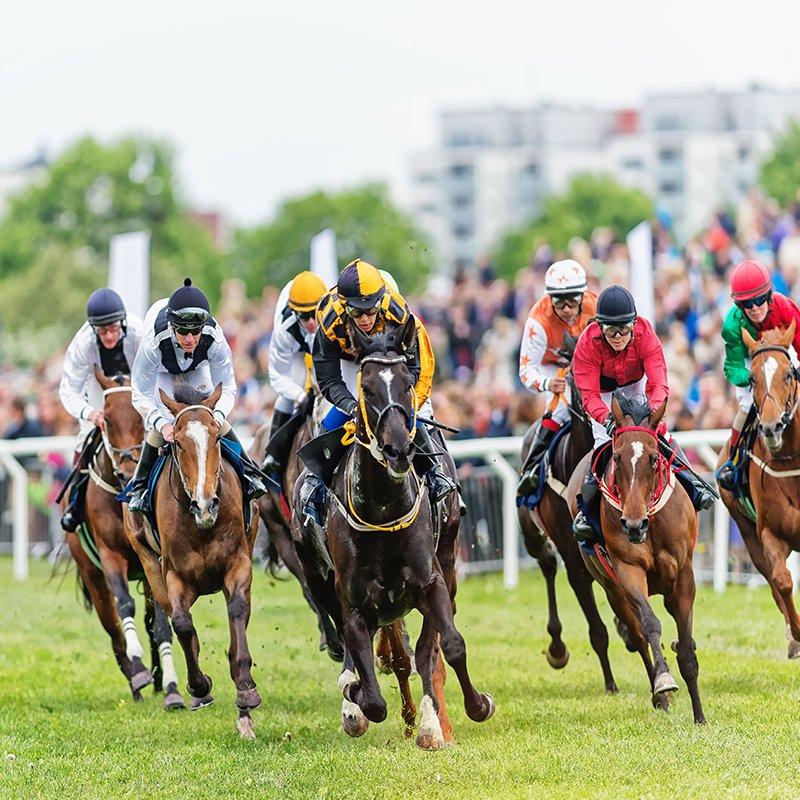 Horse Racing VIP Hospitality – Ascot – Grand National – Dubai Gold Cup – Kentucky Derby