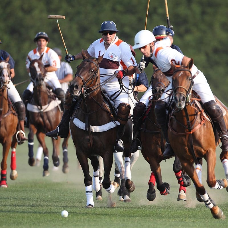 Polo VIP Hospitality – Cartier Queens Cup – Cowdray park – Palm Beach