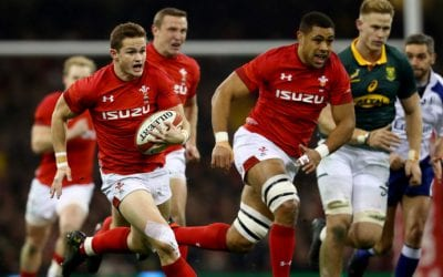 Wales v South Africa 24-22